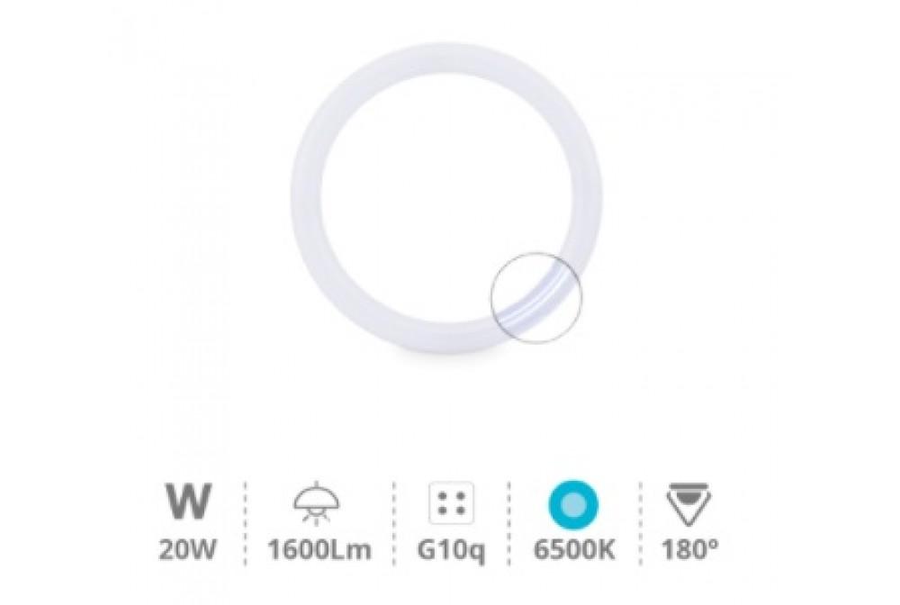TUBO CIRCULAR LED 20W 860K (EQUIV. 32W)