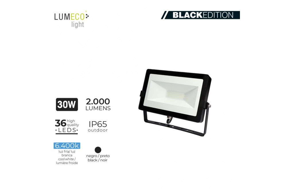 PROYECTOR LED 30W 6400K 2000lm